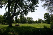 A big shade tree with a bench makes for a great stop on a hot sunny day.